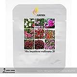 Mix Fleißiges Lieschen 9Farben Busy Lizzie Balsam Mehrjährige Pflanze Blume Samen, Profi-Pack, 20Samen/Pack, Bonsai Sultana