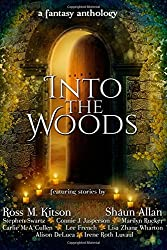 Into the Woods: a fantasy anthology by Connie J Jasperson (2015-12-19)