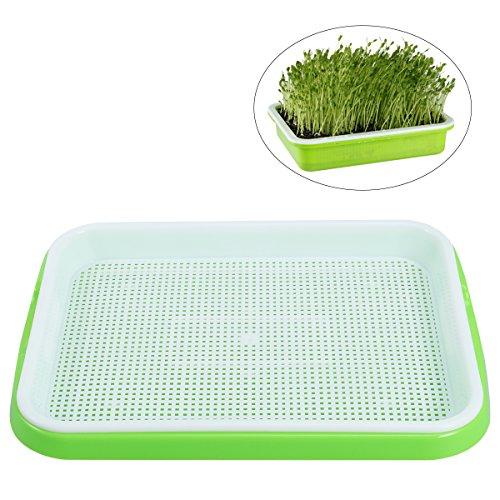 BESTOMZ Seed Sprouter Tray Soil-Free Lebensmittelqualität PP Gesunde Weizengras Züchter