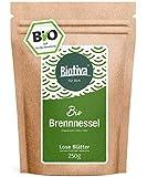 Brennnesselblätter-Tee Bio (250g) - Brennesseltee - lose Blätter - 100% Bio Brennnessel-Kräuter - Abgefüllt und kontrolliert in Deutschland (DE-ÖKO-005) - GP: € 3,56/100g