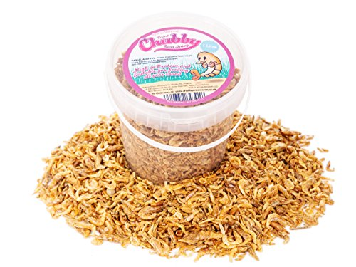 1-Litre-Chubby-Dried-River-Shrimp-100-Natural-Treat-for-Aquatic-Fish-such-as-Koi-Cichlid-pond-fish-and-Turtle-Terrapin-Food