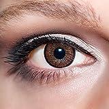 KwikSibs farbige Kontaktlinsen, dunkelbraun, 2-farbig, weich, inklusive Behälter, BC 8.6 mm/DIA 14.0/-1,00 Dioptrien, 1er Pack (1 x 2 Stück)