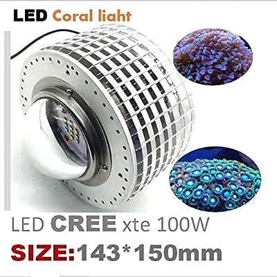 100W CREE LED Coral élèvent la lumière for la lumière de réservoir de Poisson Légumes élèvent la lumière Aquarium Marine Lampe for Les récifs de Corail Poissons Lampes de réservoir de Poisson
