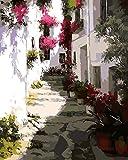 Obella Peinture par numéros Kits issu de la gamme Sunshine Alley Paysage Afternoon Tea 50x 40cm issu de la gamme Peinture par numéros, Digital Peinture à l'huile, Frameless