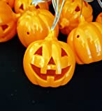 My Party Suppliers Battery Operated Ten LED Decorative String Light (Multi_Pumpkin_FBA10)