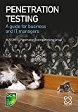 Penetration Testing: A guide for business and IT managers