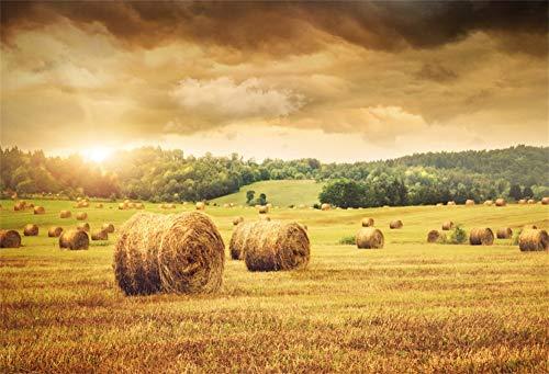 (YongFoto 2,2x1,5m Vinyl Foto Hintergrund Herbsterntezeit Frisch Ballen Heu Ackerland Wunderschöner Sonnenuntergang Fotografie Hintergrund für Photo Booth Party Fotostudio Requisiten)