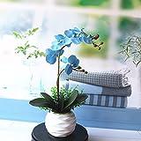 LOF-fei Künstliche Blumen Orchidee PhalaenopsisTopfpflanze Heim Dekoration Seide Tisch Zubehör Für Büro oder & Außenbereich,blau Keramik BlumenTopfpflanze