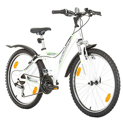 Damen Fahrrad 24 Zoll Test 2020 Die Top 7 Im Vergleich