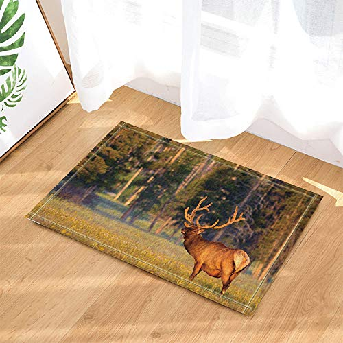 SRJ2018 A Brown Fur Reindeer with a Thick Horn stands on the Grass Facing the Super Absorbent Forest, Antislip mat or Door mat, Soft and comfortable