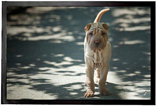 Felpudos Perros (60 x 40cm)