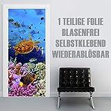 XXL-Tapeten Türtapete selbstklebend TürPoster Coral Field im Format 90x210cm - Türfolie Klebefolie von Trendwände