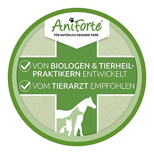 AniForte Ohrmilbenöl 50 ml bei Ohrmilben- Naturprodukt für Hunde, Katzen und andere Haustiere - 5