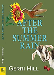 After the Summer Rain (English Edition)