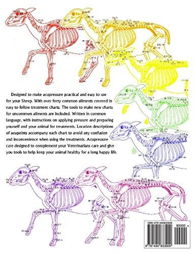 Animal Acupressure Illustrated The Sheep