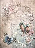 Reispapier A4 - Birdie darling, Motiv-Strohseide, Strohseidenpapier, Decoupage Papier