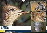 AFRIKA - Tierische Köpfe (Wandkalender 2019 DIN A4 quer): Porträts in freier Wildbahn (Monatskalender, 14 Seiten ) (CALVENDO Tiere)