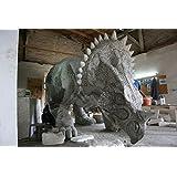 Triceratops (Lebensgroß) - Lebensgroße Dinosaurier - DIN023