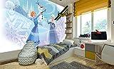 DekoShop Disney Frozen Fototapete Vlies Tapete Moderne Wanddeko Wandtapete Frozen AMD11564V4 V4 (254cm. x 184cm.)