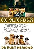 Dei Dog Bowls - Best Reviews Guide