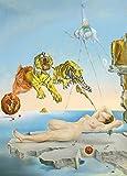 Salvador Dalí sueño causado por el vuelo de una abeja alrededor de una granada, un segundo antes de despertar (250g/m², tamaño A3)