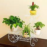 Hierro forjado de suelo rack Pot más Indoor y Outdoor Bonsai salón balcón, Bicicleta Flower Stand