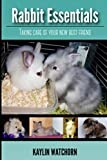 Rabbit Essentials: Taking care of your new best friend!