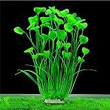 BZLine® Aquarium Dekoration Fisch Flasche grün Graspflanze Pflanzen Wasser plant (B)