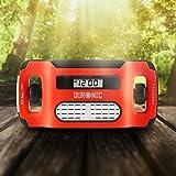 Duronic Apex Radio AM / FM – Solarenergie und USB-Ladegerät – Radiowecker / Taschenlampe / Ideal für Camping, Wandern, zu Hause oder im Garten / Aufladbare Kurbel - 2