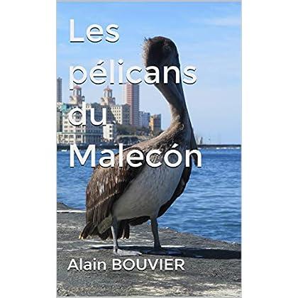 Les pélicans du Malecón