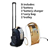 coxtod batteriebetrieben tragbaren Sauerstoffkonzentrator Generator Home Auto Travel mit Cart Sauerstoff Making Maschine, plastik, with battery/trolley/carry bag, 245 (L) x 181 (W) x 365 (H)mm