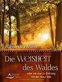 Die Weisheit des Waldes: oder wie man im Einklang mit der Natur lebt - Alexandra Meier