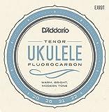 Die besten D'Addario Ukulele Strings - Daddario EJ99T Tenor Pro-Arte Carbon Ukulele Saitensatz Bewertungen