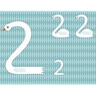 La-mia-prima-scatola-dei-numeri-Montessori-un-mondo-di-conquiste-Con-gadget