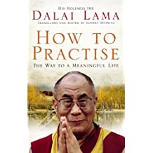 How To Practise: The Way to a Meaningful Life by Dalai Lama (2008-02-07)