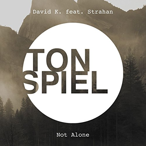Not Alone (feat. Strahan) [einsauszwei Remix]