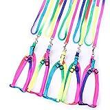 Tianya Hundegeschirr, Nylon, bunt, Regenbogenfarben, verstellbar, buntes Geschirr