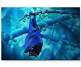 Leinwandbilder | Bilder Leinwand 120x80cm Fledermaus hängt an Einem AST