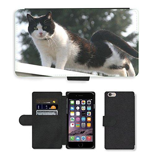 Just Mobile pour Hot Style Téléphone portable étui portefeuille en cuir PU avec fente pour carte//m00138904Chats chat animaux Animal//Apple iPhone 6Plus 14cm