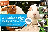 Are Guinea Pigs the Right Pet for You?: Can You Find the Facts?