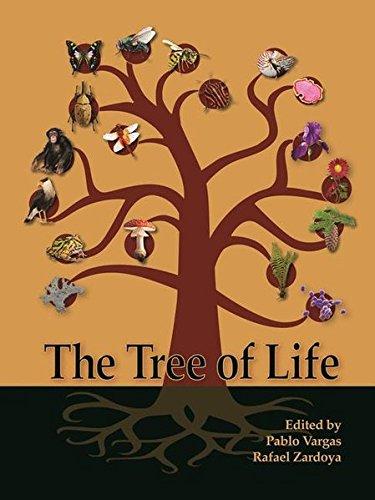The Tree of Life por Pablo Vargas