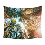 Tonpot Forest Tapestry Wall Decor Picnic Blanket Decorative Wall Hanging Nature Large Tablecloths for Camping Bedroom Living Room