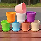 8PCS Flower Plant Pots 10CM Resin Seedlings Nursery with Pallet in 8 Colors Best Choice for Meat Plants and Other Small Plants