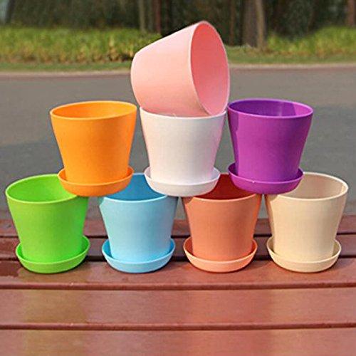 8 Stück Pflanztöpfe 10CM Harz Pflanzkübel mit Palette in 8 Farben Perfekt für Home Büro Dekoration