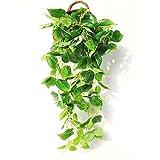 JUSTOYOU 0,9m artificiale Hanging piante Ivy Vine Fake leaves Greeny catena Wall Home Room Garden wedding garland fuori decorazione, confezione da 1 Scindapsus Vine