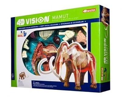 4D Anatomie Skelett Mammut 4D Anatomie S EKB von Tedco
