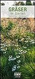 Gräser im Garten 2019 – DUMONT Wandkalender – Garten-Kalender – Hochformat 30,0 x 68,5 cm