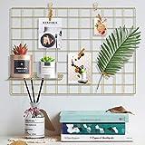 Yuede Eisen Gitter Grid Panel Set,Grid Mesh Display Panel dekorative Eisen Rack Clip Foto Wand hängen Bildwand, Ins Art Display Fotowand, 25,6 x 17,7 Zoll (Gold)