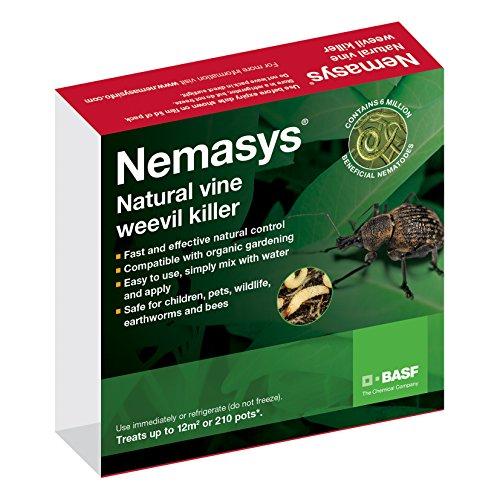 nemasys-vine-weevil-killer-standard-pack