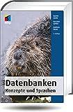 Datenbanken - Konzepte und Sprachen (mitp Professional) - Gunter Saake, Kai-Uwe Sattler, Andreas Heuer